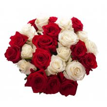 Send 24 Red and White Roses to Dhaka in Bangladesh